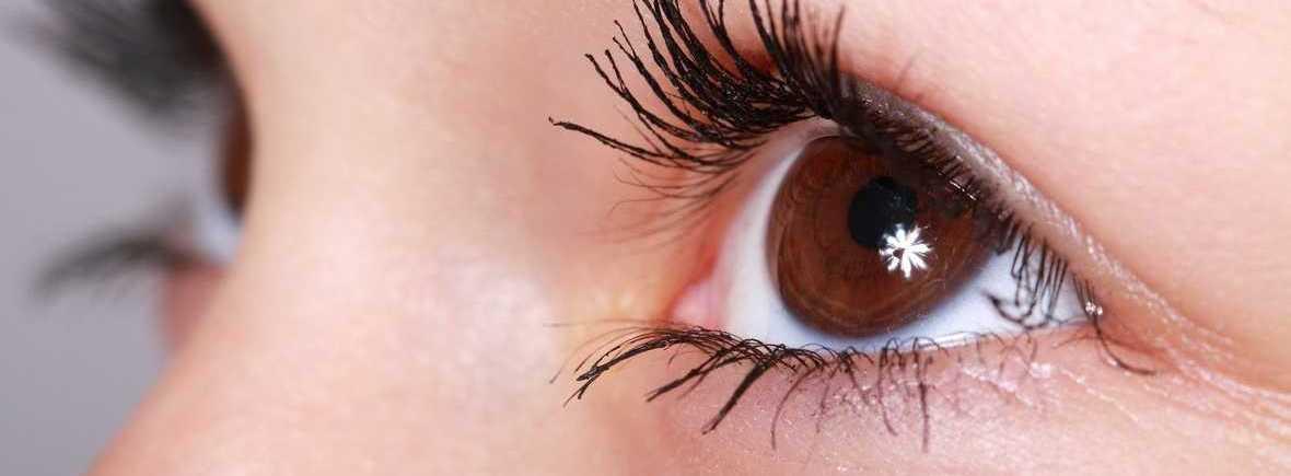 Nos spécialités Optique Chatel